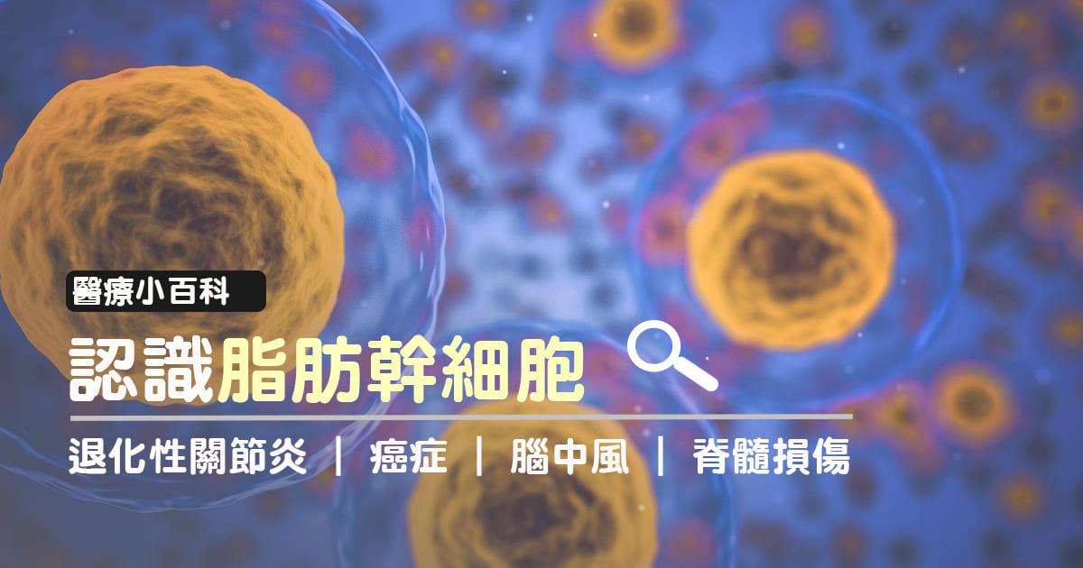 膜 腸 織 間 炎 脂肪